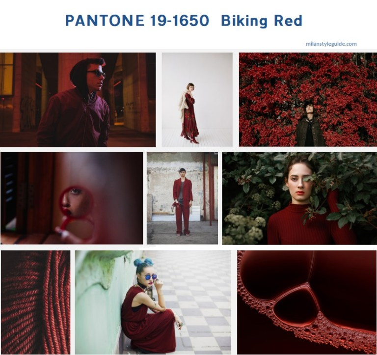 PANTONE-19-1650-Biking-Red-1.jpg