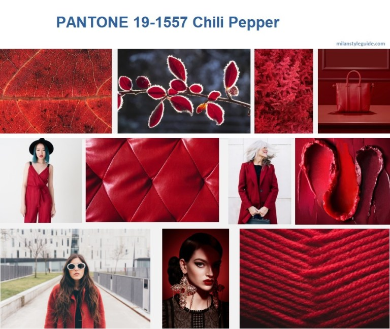 PANTONE-19-1557-Chili-Pepper.jpg